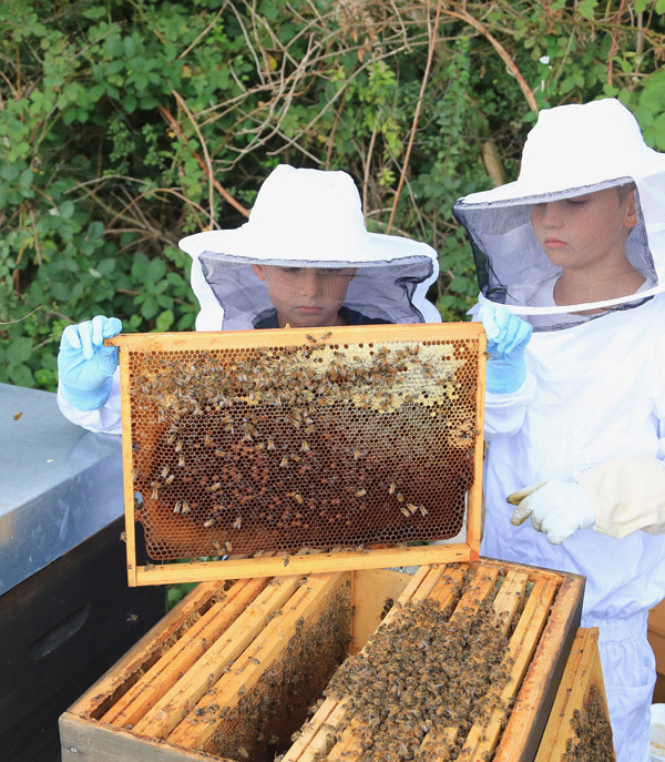 Enfants tennant une ruche dans les mains
